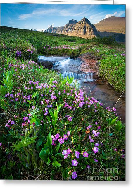 Reynolds Greeting Cards - Logan Pass Creek Greeting Card by Inge Johnsson