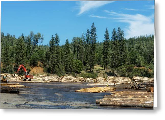 Northern California Landscapes Greeting Cards - Logging in Northern California Greeting Card by Mountain Dreams