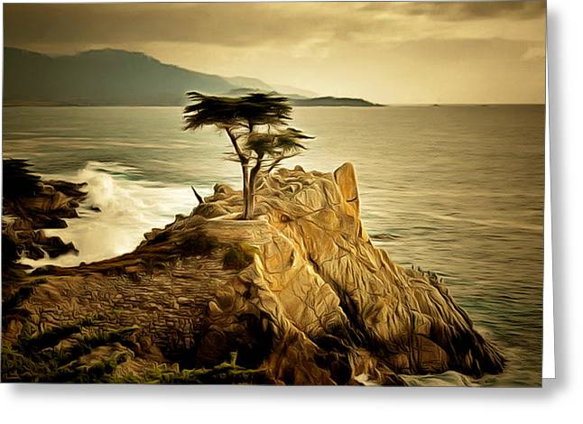 Scenes Of Pebble Beach Greeting Cards - Lone Cypress Detail 2 Greeting Card by Barbara Snyder