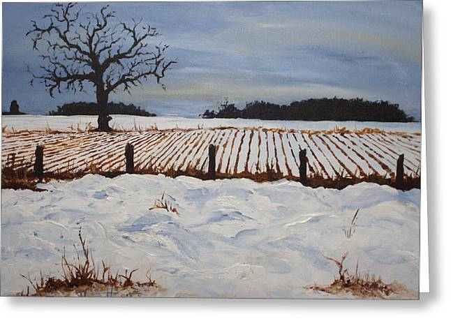 Drifting Snow Paintings Greeting Cards - Lone Tree in Winter Greeting Card by Monica Veraguth