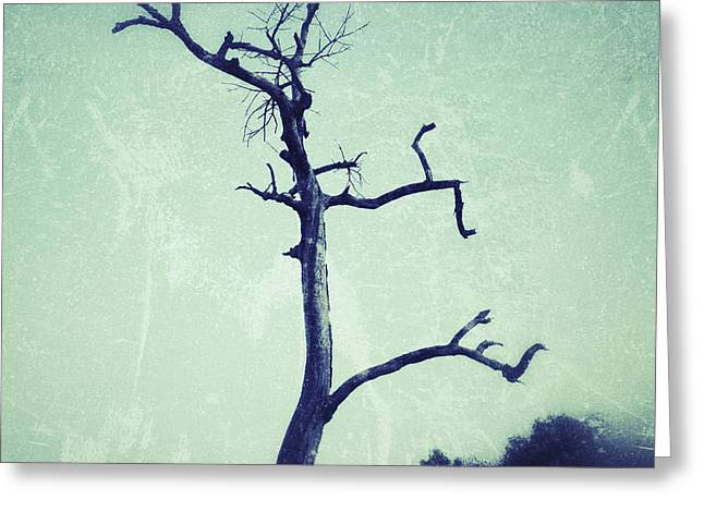 Greeting Cards - Lone tree Greeting Card by Ivy Ho