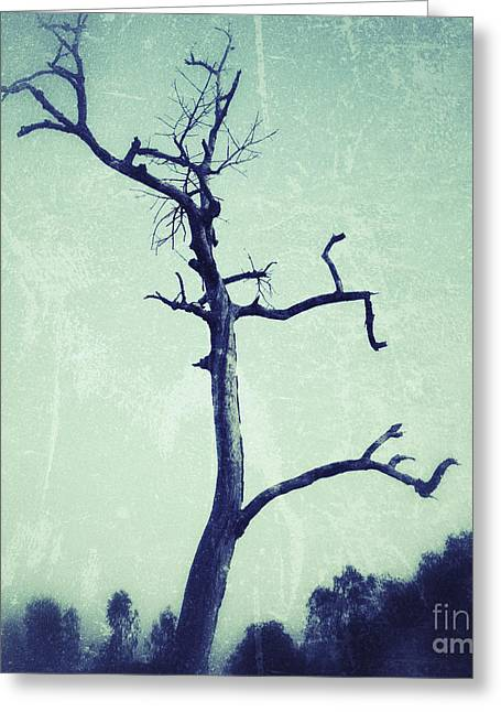 Harvest Photographs Greeting Cards - Lone tree Greeting Card by Ivy Ho