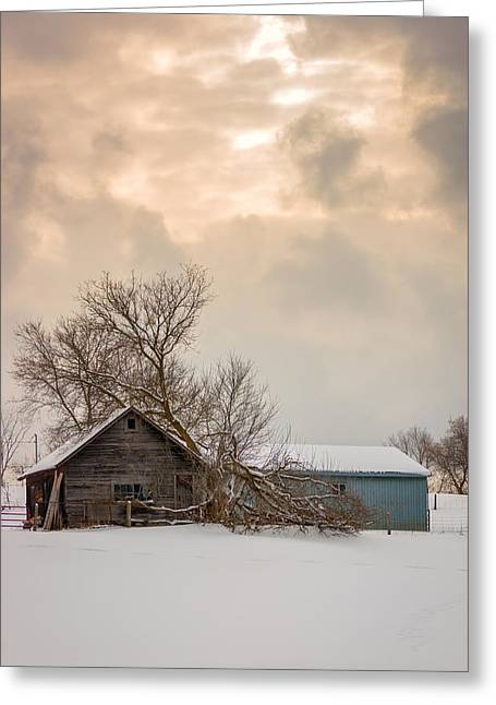 Snowstorm Greeting Cards - Loneliness Greeting Card by Steve Harrington