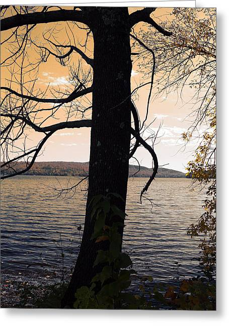 Mystic Sky Art Greeting Cards - Lonely Tree   Greeting Card by Mark Ashkenazi