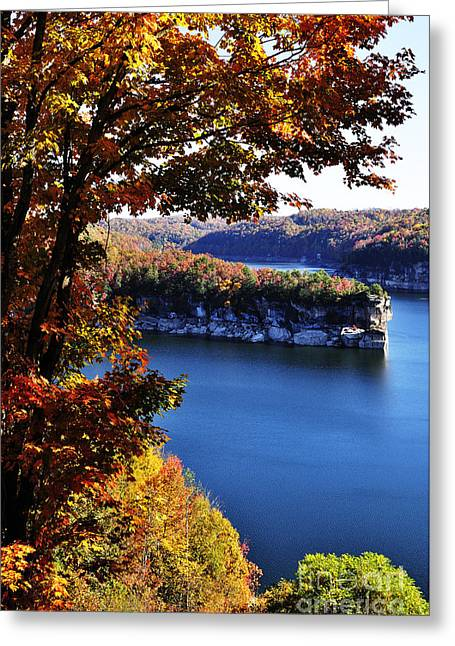 Man-made Lake Greeting Cards - Long Point Summersville Lake Greeting Card by Thomas R Fletcher