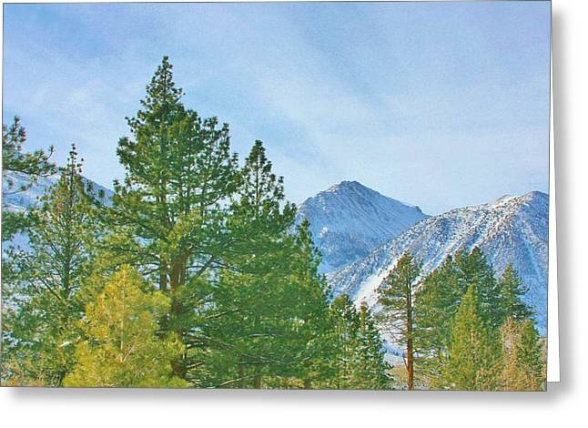 Big Pine Country Greeting Cards - Looking Lovely Greeting Card by Marilyn Diaz