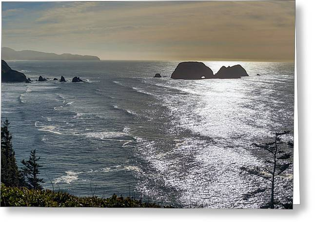 Pacific Tapestries - Textiles Greeting Cards - Looking Out Greeting Card by Dennis Bucklin