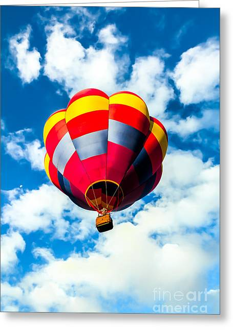 Looking Up Greeting Card by Robert Bales