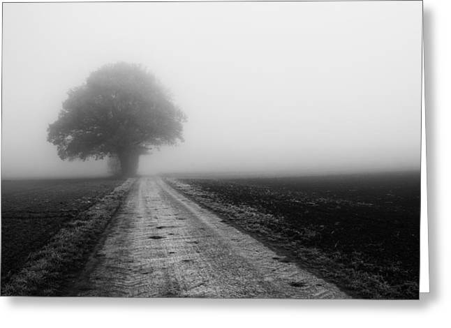 Wandern Greeting Cards - Lost in the Fog Greeting Card by Miguel Winterpacht