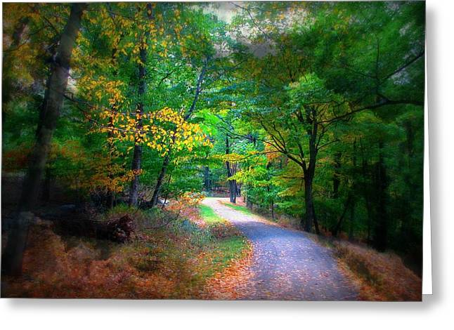 Westchester County Greeting Cards - Lost on the Trail Greeting Card by Diana Angstadt