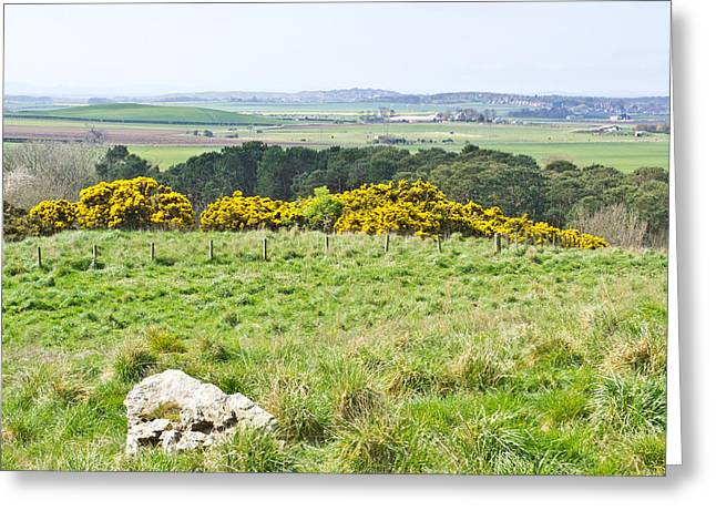 Navigate Greeting Cards - Lothian landscape Greeting Card by Tom Gowanlock