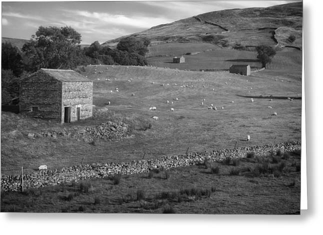 Stonewall Greeting Cards - Lovely Dales of Yorkshire Greeting Card by Mountain Dreams