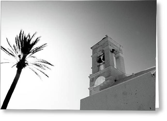 Low Angle View Of A Palm Tree Greeting Card by Panoramic Images