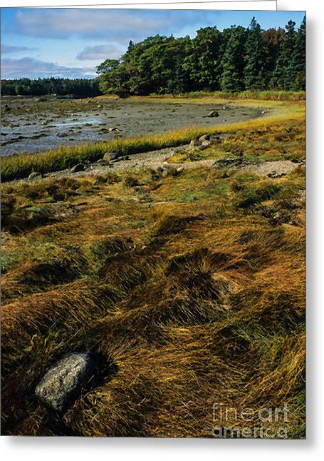 Reach Greeting Cards - Low Tide Reach Road Greeting Card by Thomas R Fletcher