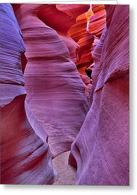 Robert Jensen Greeting Cards - Lower Antelope Canyon Tones and Curves Greeting Card by Robert Jensen