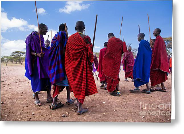Tribal Decoration Greeting Cards - Maasai men in their ritual dance in their village in Tanzania Greeting Card by Michal Bednarek