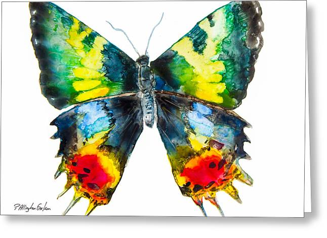 Yupo Paper Greeting Cards - Madagascan Sunset Moth Greeting Card by Patricia Allingham Carlson