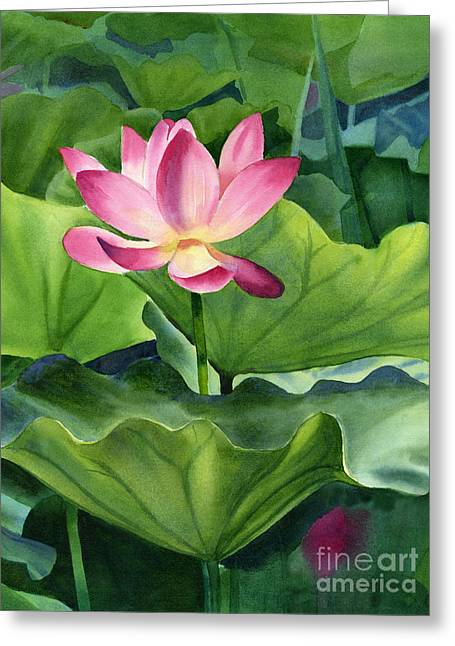 Lotus Lily Greeting Cards - Magenta Lotus Blossom Greeting Card by Sharon Freeman