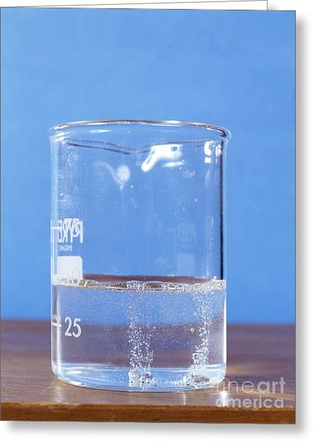 Experiment Greeting Cards - Magnesium Reacting With Water Greeting Card by Andrew Lambert Photography