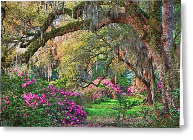 Best Sellers -  - Overhang Greeting Cards - Magnolia Plantation Azaleas Greeting Card by Jack Nevitt