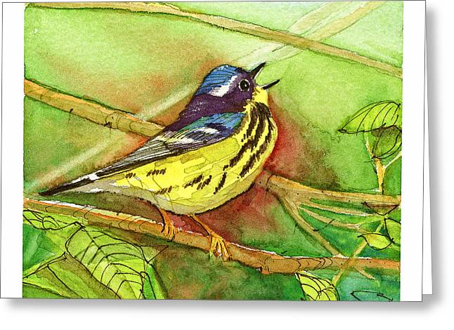 Magnolia Warbler Greeting Cards - Magnolia Warbler Greeting Card by Dave Whited