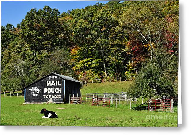 Randolph County Greeting Cards - Mail Pouch Barn Greeting Card by Thomas R Fletcher