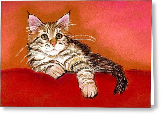 Maine Pastels Greeting Cards - Maine Coon Kitten Greeting Card by Olde Time  Mercantile