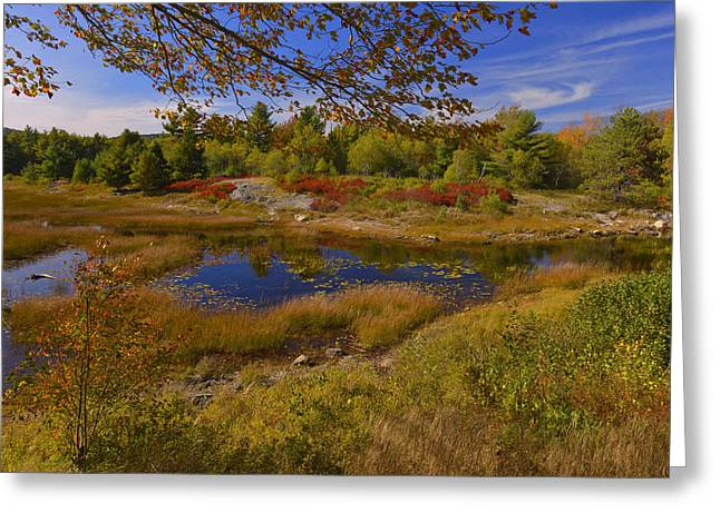 Down East Maine Greeting Cards - Maine Fall Colors Greeting Card by Stephen  Vecchiotti