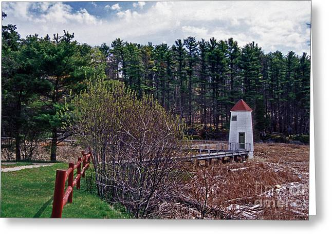 Maine Beach Greeting Cards - Maine Greeting Card by Skip Willits