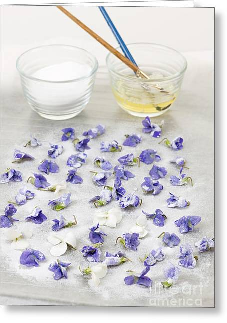 Preserved Greeting Cards - Making candied violets Greeting Card by Elena Elisseeva