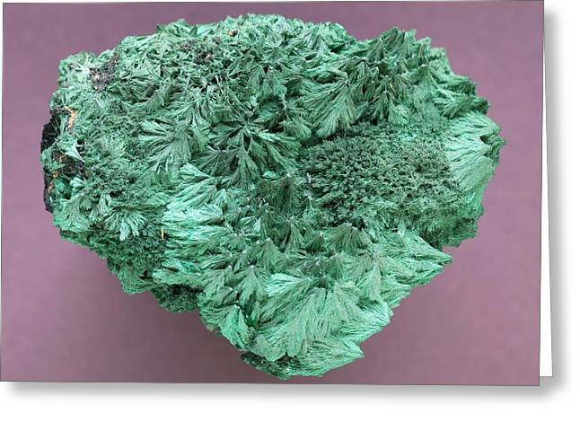Malachite Mineral Greeting Card by Science Photo Library