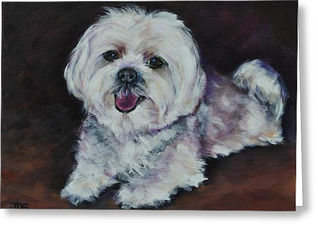 Toy Maltese Greeting Cards - Maltese Greeting Card by Julie Dalton Gourgues