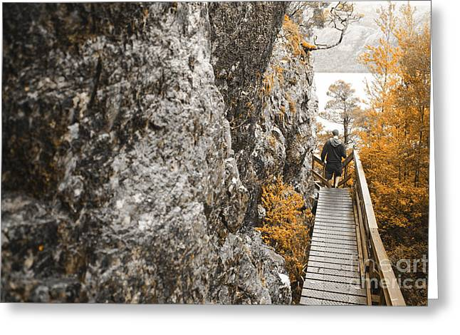 Cradle-mountain Greeting Cards - Man hiking in Cradle Mountain Tasmania Australia Greeting Card by Ryan Jorgensen
