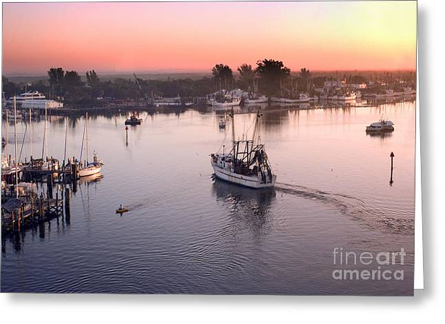 Fort Meyers Greeting Cards - Matanzas Pass Greeting Card by Thomas Levine