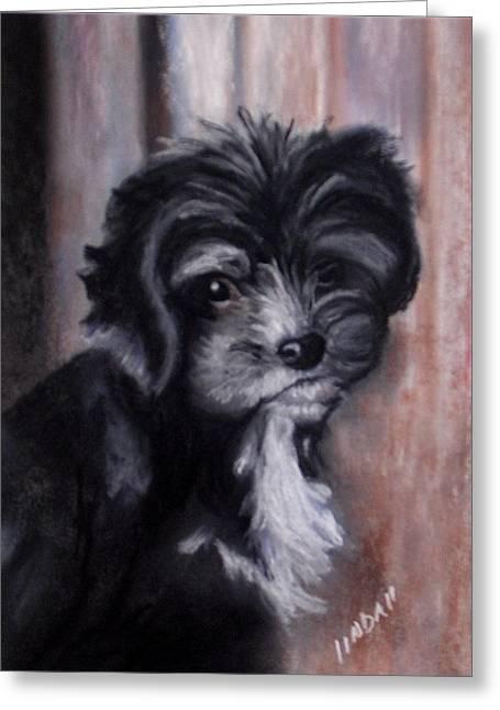 Pup Pastels Greeting Cards - McDougal Greeting Card by Linda Lindall