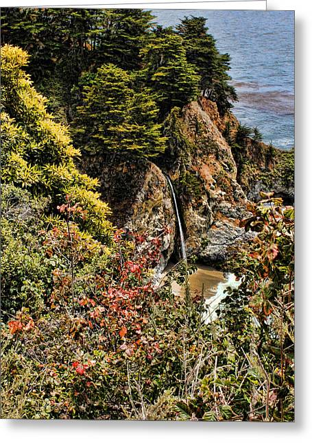 Mcway Falls 1 Greeting Card by Judy Vincent