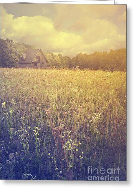 Old Cabins Greeting Cards - Meadow Greeting Card by Jelena Jovanovic