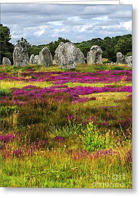 Monolith Greeting Cards - Megalithic monuments in Brittany Greeting Card by Elena Elisseeva