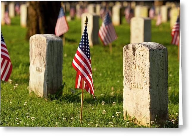 Memorial Day At Stones River National Greeting Card by Brian Jannsen