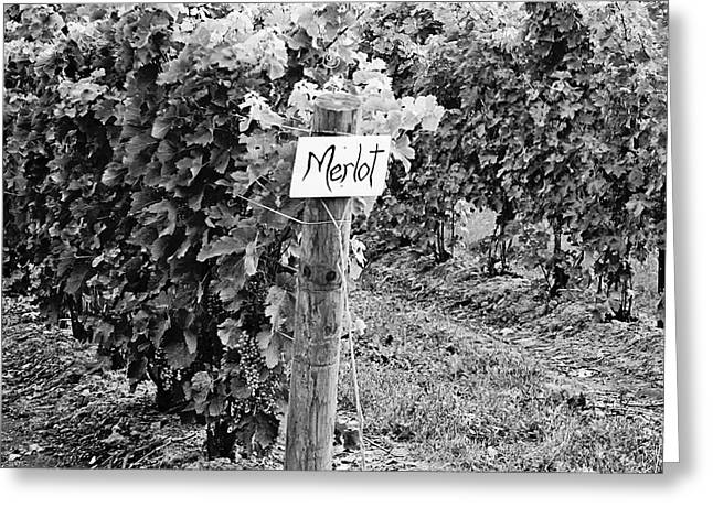 Fruit And Wine Greeting Cards - Merlot Greeting Card by Scott Pellegrin