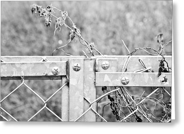 Manufacturing Greeting Cards - Metal fence Greeting Card by Tom Gowanlock