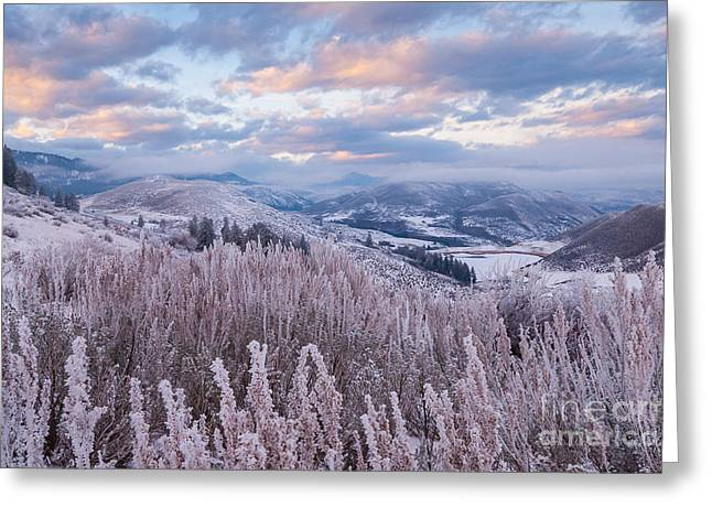 Methow Greeting Cards - Methow Winter Sunset Greeting Card by Lidija Kamansky