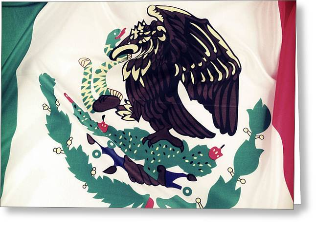 Ruffled Greeting Cards - Mexican flag Greeting Card by Les Cunliffe