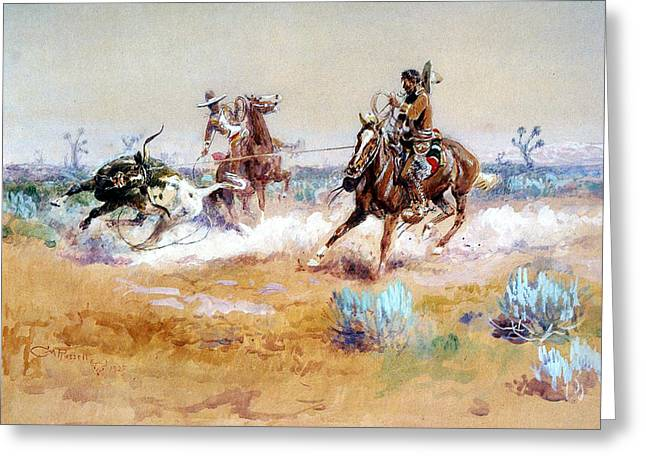 Steer Greeting Cards - Mexico Greeting Card by Charles Russell