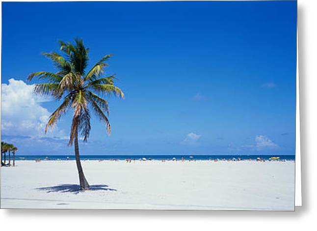 Miami Fl Usa Greeting Card by Panoramic Images