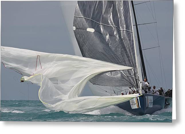 Ultimate Luxury Greeting Cards - Miami Sail Week Greeting Card by Steven Lapkin