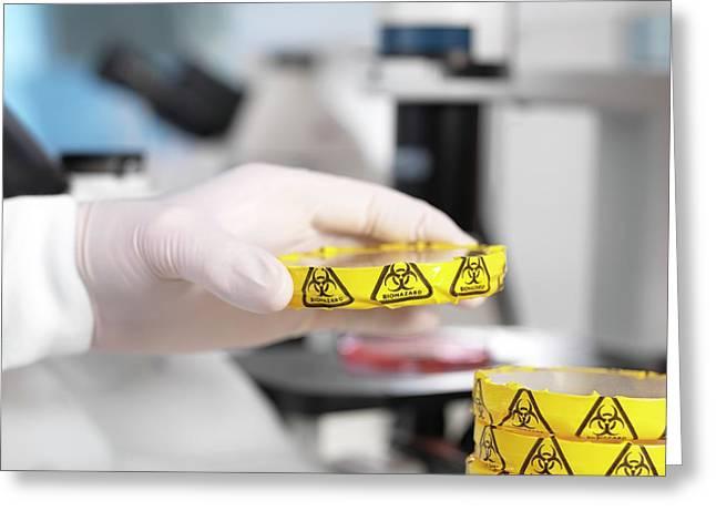 Microbiology Lab Greeting Card by Tek Image