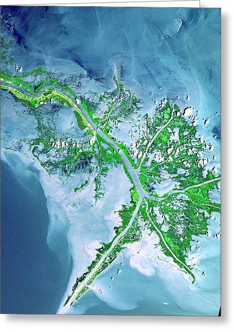 Interstellar Space Greeting Cards - Mississippi River Delta Greeting Card by Celestial Images
