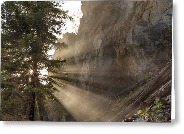 Mist From Holland Falls Is Backlit Greeting Card by Chuck Haney