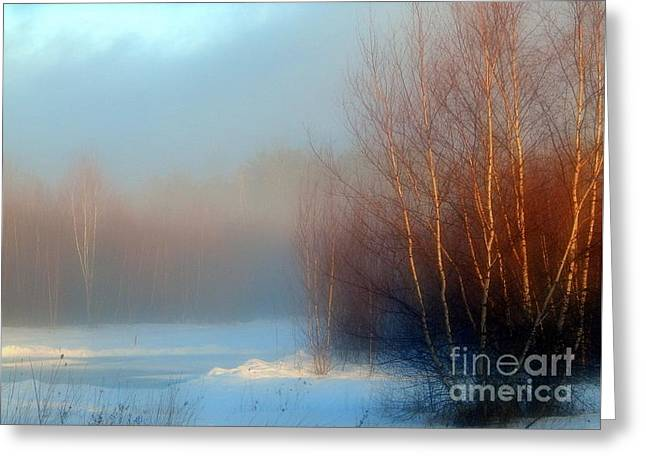 Wintry Greeting Cards - Mist of the Morning Greeting Card by Karen Cook